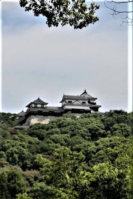 藤田八束の鉄道写真@四国松山での路面電車と松山の街並み、松山城と路面電車のお洒落なコンビ_d0181492_21040977.jpg