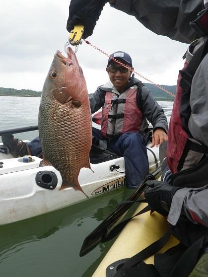 遅ればせながら石垣島の釣り in 梅雨_f0097924_13443751.jpg