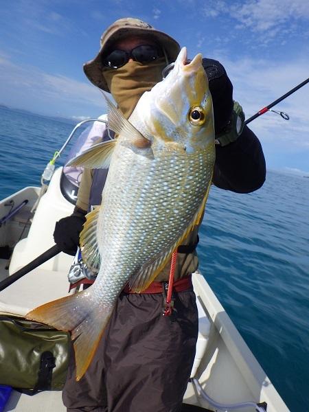 遅ればせながら石垣島の釣り in 梅雨_f0097924_14044313.jpg