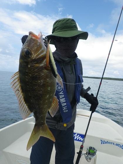 遅ればせながら石垣島の釣り in 梅雨_f0097924_14051802.jpg