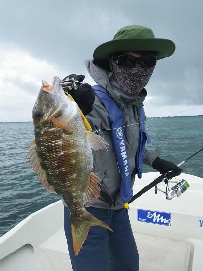 遅ればせながら石垣島の釣り in 梅雨_f0097924_14055522.jpg