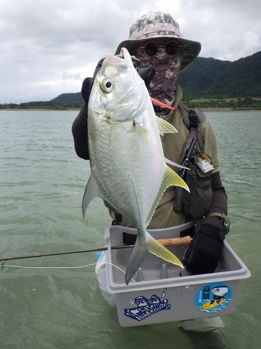 遅ればせながら石垣島の釣り in 梅雨_f0097924_14331491.jpg