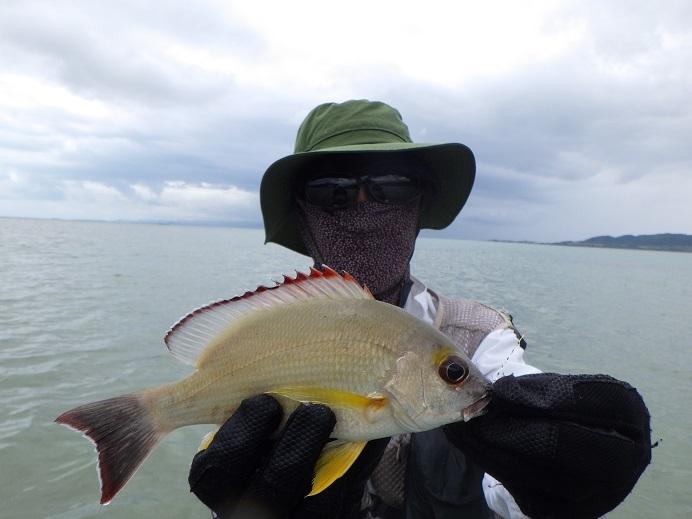 遅ればせながら石垣島の釣り in 梅雨_f0097924_14335277.jpg