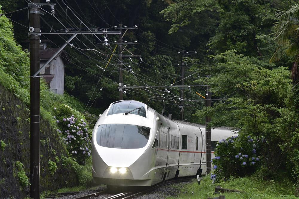 小田急線・ロマンスカーLSE引退まじか_e0367330_2030726.jpg