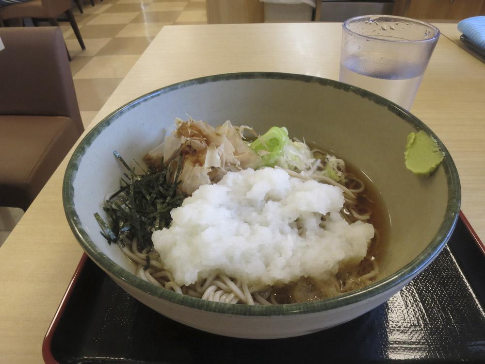 小田急線・ロマンスカーLSE引退まじか_e0367330_20403497.jpg