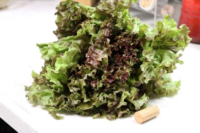 野菜づくしのビビンパ_d0377645_22100550.jpg