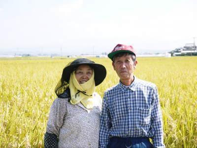 七城米 長尾農園 まもなく平成30年度の田植えです!その前に美しすぎる苗床の様子をご紹介いたします!_a0254656_17062313.jpg