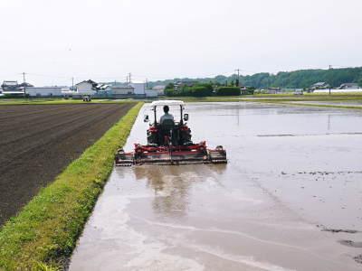 七城米 長尾農園 まもなく平成30年度の田植えです!その前に美しすぎる苗床の様子をご紹介いたします!_a0254656_18140855.jpg
