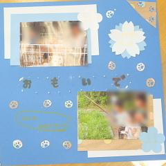 c0153884_17304605.jpg