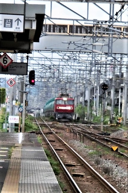 藤田八束の鉄道写真@東北本線東仙台駅にて、タンクローリーの貨物列車金太郎がとっても元気に活躍しています_d0181492_08295623.jpg