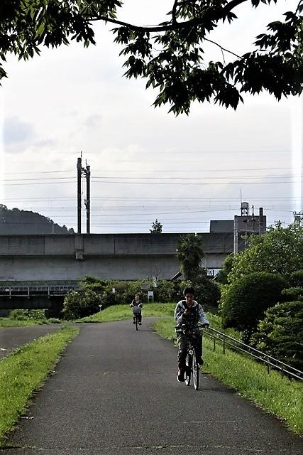藤田八束の鉄道写真@仙台市に広瀬川有り、広瀬川を渡る貨物列車「金太郎」_d0181492_19313473.jpg