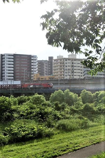 藤田八束の鉄道写真@仙台市に広瀬川有り、広瀬川を渡る貨物列車「金太郎」_d0181492_19314202.jpg