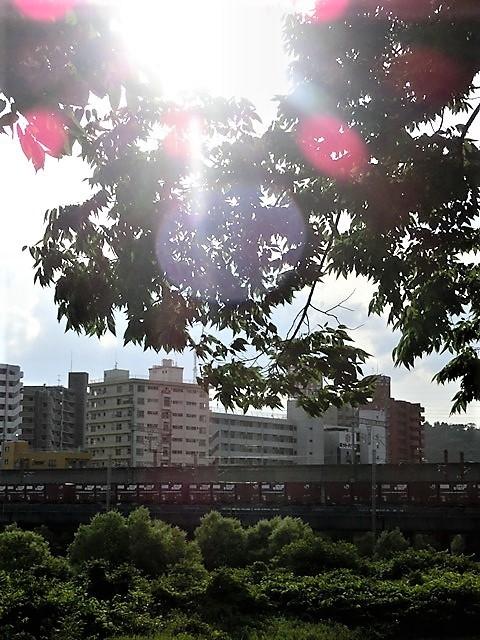 藤田八束の鉄道写真@仙台市に広瀬川有り、広瀬川を渡る貨物列車「金太郎」_d0181492_19315962.jpg
