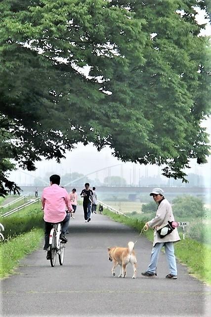 藤田八束の素敵なお話@楽しい一日に感謝、明日もハッピーな日であることを祈っています・・・人生は楽しくあるもの_d0181492_19363137.jpg