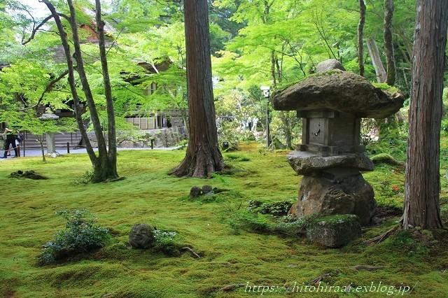 京都 大原 三千院 ①新緑と苔_f0374092_10544139.jpg