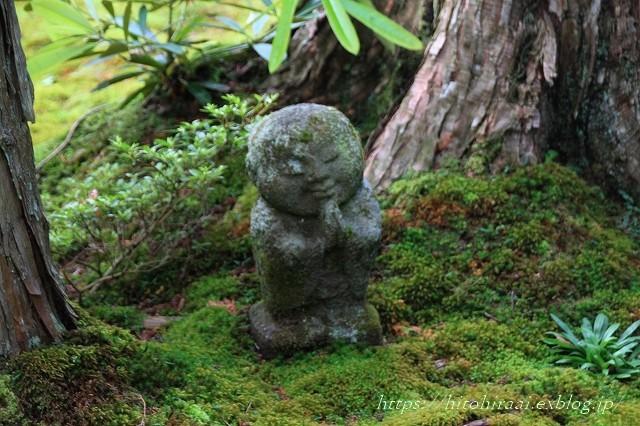 京都 大原 三千院 ①新緑と苔_f0374092_10573522.jpg