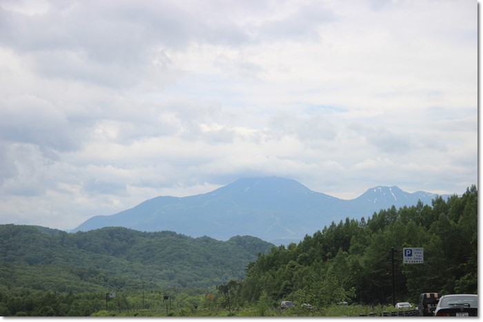 ニセコ~神仙沼('18・6・22)_f0146493_10490734.jpg