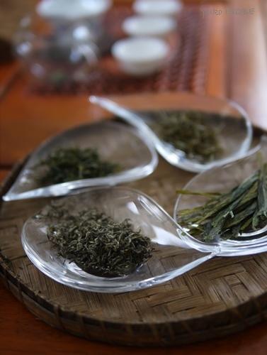 中国茶講座_a0169924_22393342.jpg
