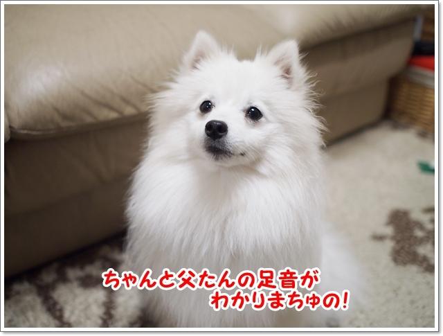 d0013149_00503661.jpg