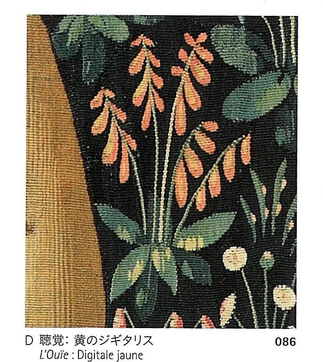 初夏に花咲くボタニカルジャケットの装い🎵_a0138976_13483340.jpg