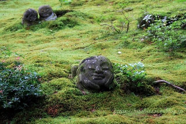京都 大原 三千院 ①新緑と苔_f0374092_19091334.jpg