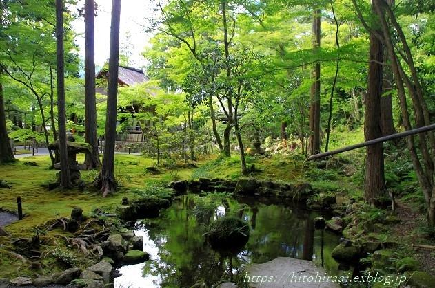 京都 大原 三千院 ①新緑と苔_f0374092_19105800.jpg