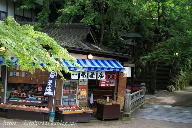 京都 大原 三千院 ①新緑と苔_f0374092_19200836.jpg