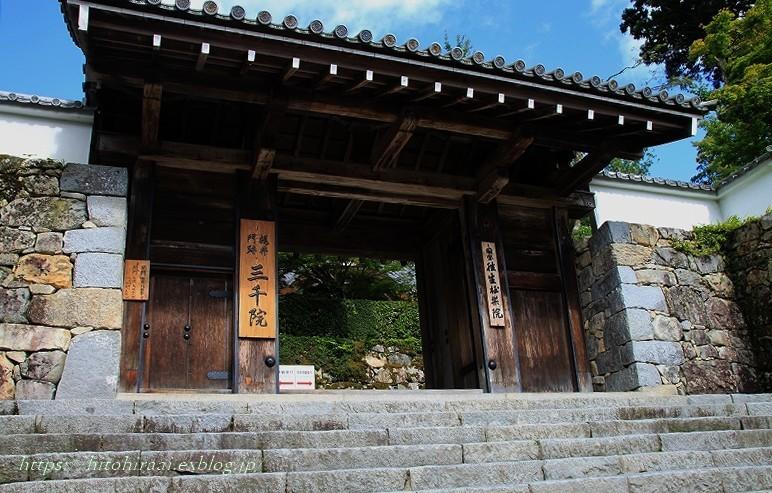 京都 大原 三千院 ①新緑と苔_f0374092_21185872.jpg