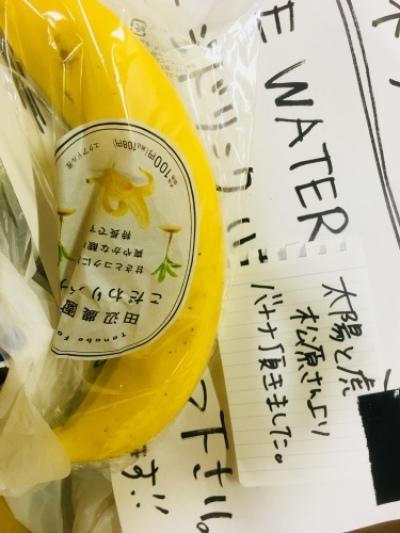 ネコフェスありがとうございました!!(稲村太佑)_c0222904_23062595.jpg