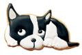 かわいいうちのこクッキーをつくろう_d0174704_21521424.jpg