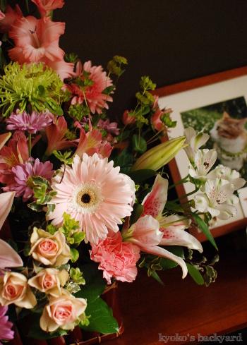 Sandyにぴったりなお花が届きました_b0253205_01413553.jpg
