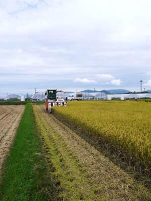健康農園さんの無農薬栽培『雑穀米』『発芽玄米』大好評販売中!平成30年度の田植えの様子を現地取材!_a0254656_17561643.jpg