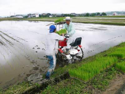 健康農園さんの無農薬栽培『雑穀米』『発芽玄米』大好評販売中!平成30年度の田植えの様子を現地取材!_a0254656_18115187.jpg