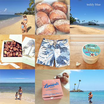 Hawaii trip 2018  ブルーハワイへ_e0253364_17031892.jpg