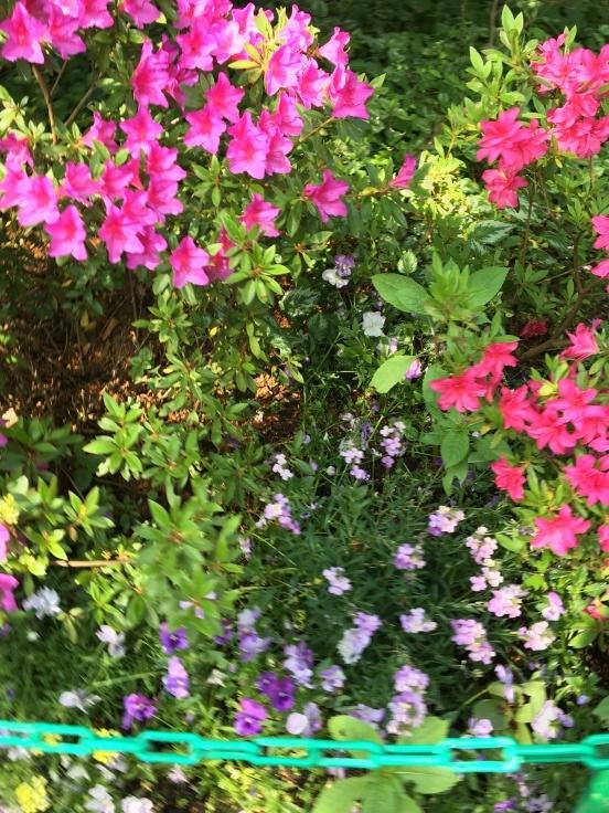 暮らすような旅2018〜憧れのジヴェルニーへモネのみた風景を訪ねて〜_c0274374_23401105.jpeg