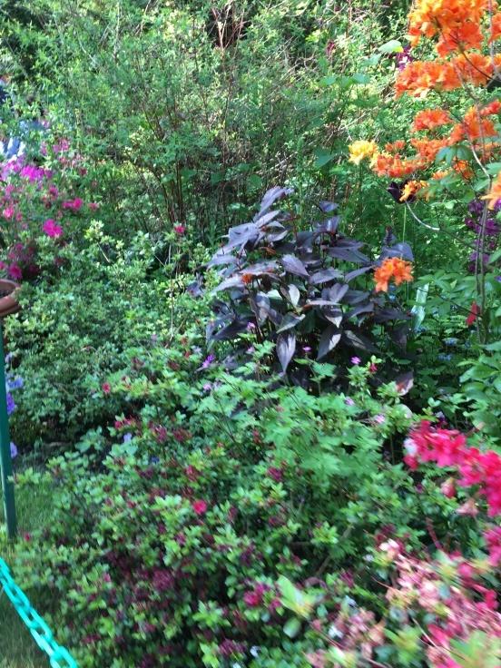 暮らすような旅2018〜憧れのジヴェルニーへモネのみた風景を訪ねて〜_c0274374_23404196.jpeg