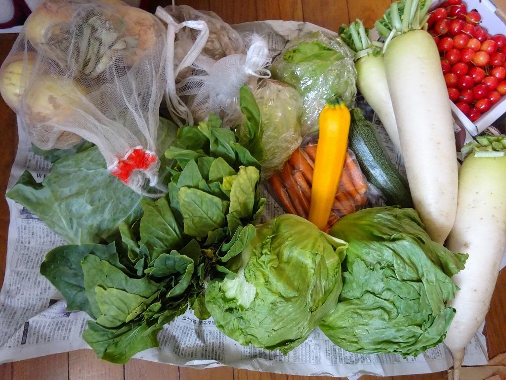 実家からの野菜2018 第二段!レタス、玉葱、サクランボも!_d0061678_13080794.jpg