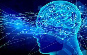 ステップエクササイズは身体だけではなく脳にも効果あり_b0179402_12111695.jpg
