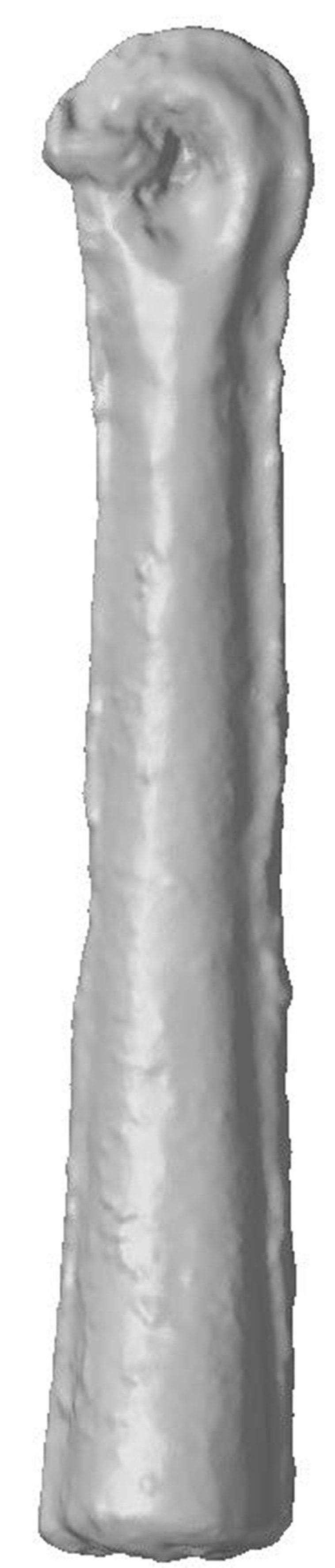 淡路島銅鐸、朝鮮半島の鉛使用か 成分分析で判明 _b0064113_09012959.jpg