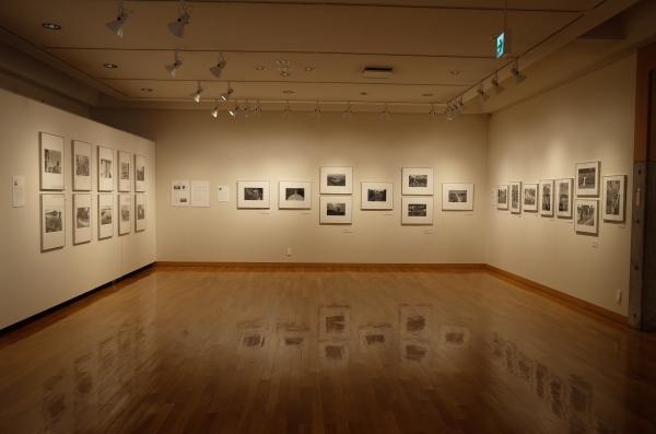 東川町文化ギャラリーで開催中の写真展_b0187229_17351511.jpg