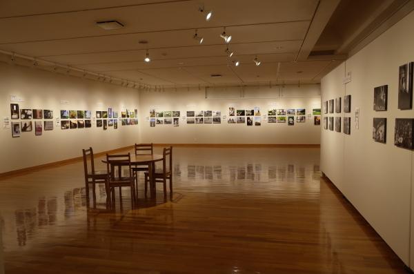 東川町文化ギャラリーで開催中の写真展_b0187229_17351700.jpg