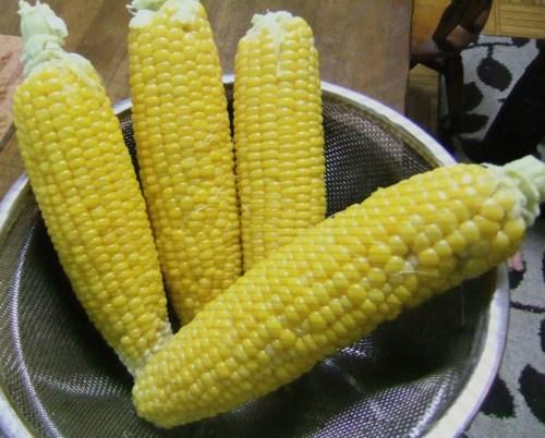 トウモロコシ..初収穫_b0137932_19433713.jpg