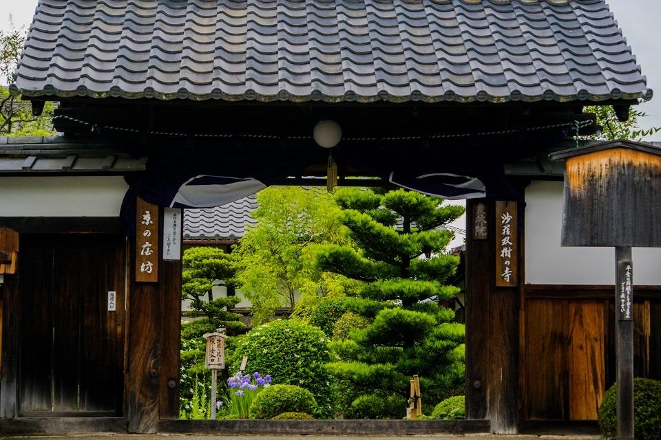 東林院~沙羅の花を愛でる会_e0363038_10371773.jpg