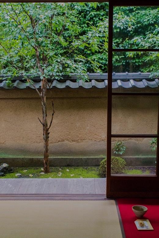 東林院~沙羅の花を愛でる会_e0363038_10380960.jpg