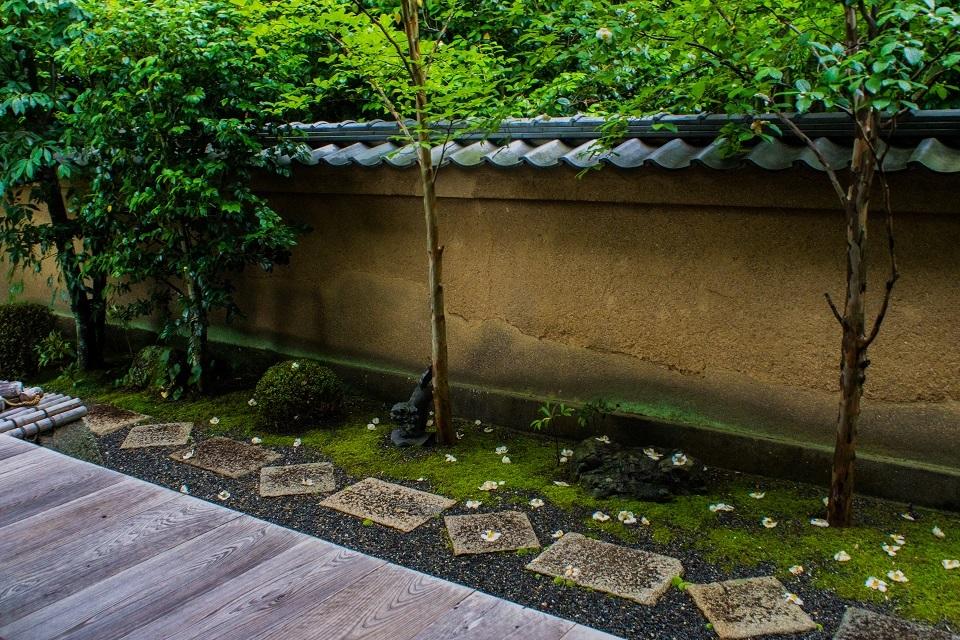 東林院~沙羅の花を愛でる会_e0363038_10382330.jpg
