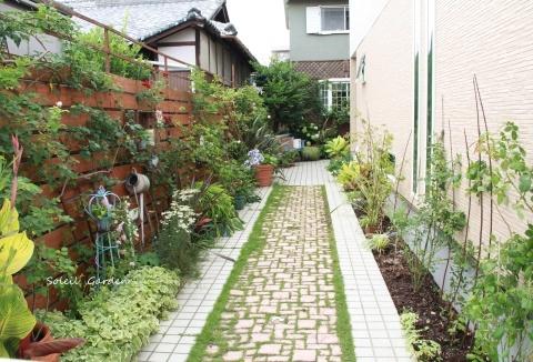 ◆新しい庭のDIY・・バラの植え付け_e0154682_22000348.jpg