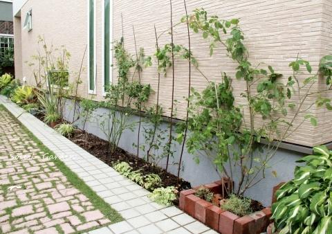 ◆新しい庭のDIY・・バラの植え付け_e0154682_22015728.jpg