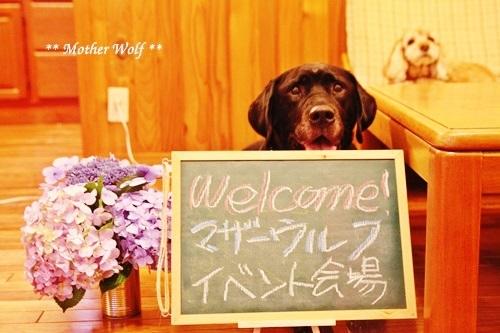 ゲストハウス@伊豆高原で、パーティーして来ましたよ~ん♪_e0191026_11101868.jpg
