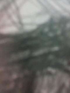 b0136144_1720549.jpg