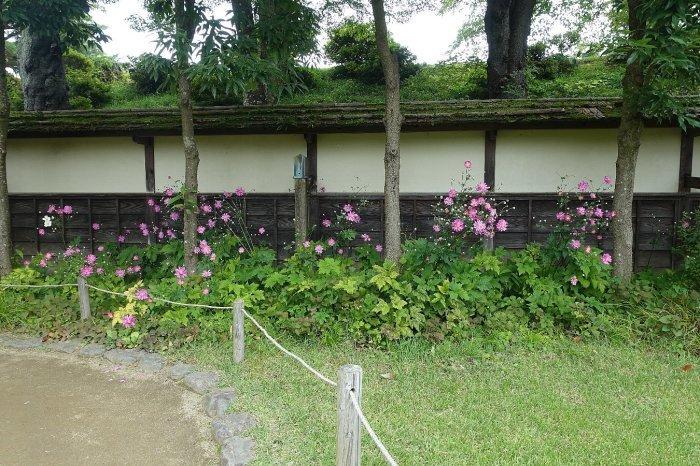 鶴ヶ城公園 茶室「麟閣」_c0112559_08465948.jpg